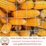 Welded Wire Mesh for maize/corn, quanyumiwang, quanyumidianhanwang